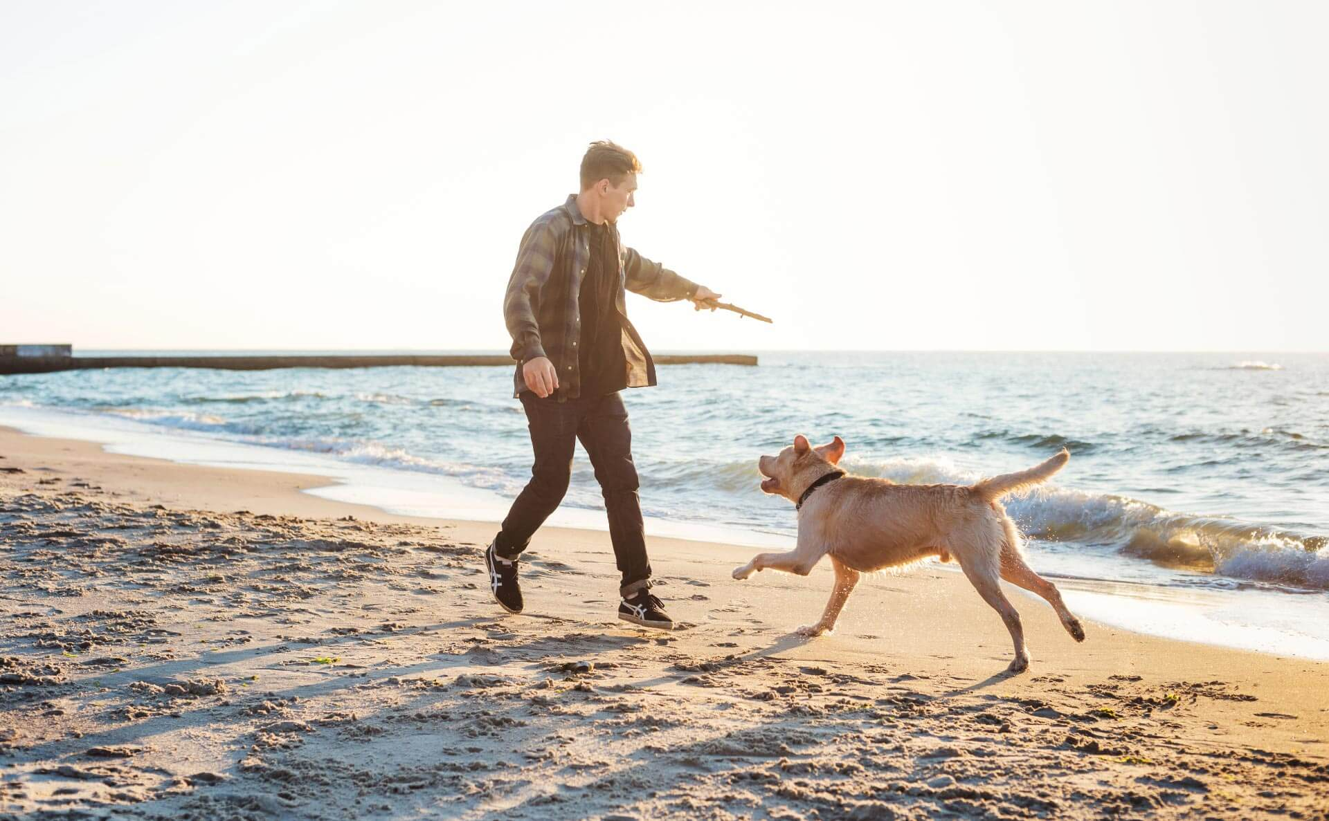 Man throwing a stick for his dog on the beach.